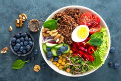 Buddha bowl dinner with boiled egg, chickpea, fresh tomato, sweet pepper, cucumber, savoy cabbage, red onion, green sprouts. Spinach leaves, blueberry, walnuts stock images