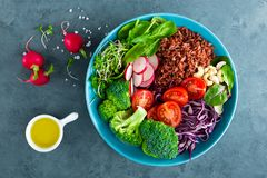 Buddha bowl meal with kale, spinach and chard leaves, brown rice, tomato, broccoli, radish, fresh green sprouts and pine nuts. Hea. Lthy balanced nutrition Stock Images