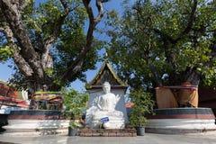 buddha branco na província de Phitsanulok, Tailândia Imagem de Stock Royalty Free
