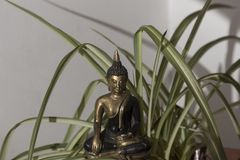 Buddha bronze sculpture. Among the green leaves stock photo
