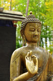 Buddha buddhist Stock Images