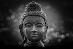 Buddha bust in the night. With the city lights in bokeh bright. Your warm bronze Royalty Free Stock Photo