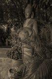 Buddha carving Royalty Free Stock Image
