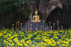 Buddha @ Chiangmai/Tailandia Immagine Stock Libera da Diritti