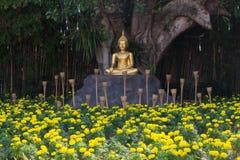 Buddha @ Chiangmai/ Thailand. Buddha in the flower at Thailand Royalty Free Stock Image