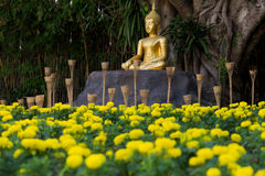 Buddha @ Chiangmai/ Thailand Stock Image