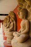 Buddha cugiel obraz royalty free