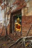 Buddha dalla finestra in tempio Fotografia Stock