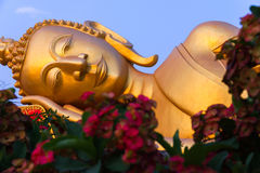 Buddha de oro de mentira Fotos de archivo libres de regalías