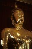 Buddha de oro, en templo Imagen de archivo libre de regalías