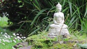 Buddha de pedra em um jardim do zen vídeos de arquivo