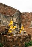 Buddha in den Ruinen Lizenzfreie Stockfotos