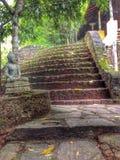 Buddha an der Treppe Lizenzfreies Stockbild