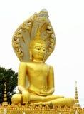 buddha diagram sitting Arkivfoton