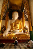 Buddha dorato Fotografia Stock
