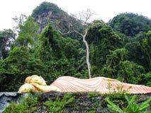 Buddha dorato addormentato che si trova nella giungla Fotografia Stock