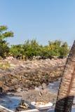 Buddha dryluje snall statuę na wschodzie Bali wyspa obrazy royalty free