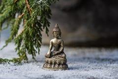 Buddha e ramo dell'abete nella neve Immagini Stock Libere da Diritti