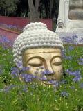 Buddha Eden Stock Images
