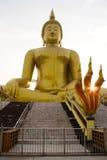 Buddha em Ayutthaya Imagem de Stock Royalty Free