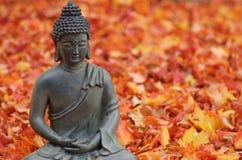 Buddha en hojas de la caída Imágenes de archivo libres de regalías