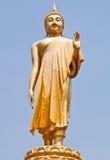 Buddha estando Fotos de Stock Royalty Free