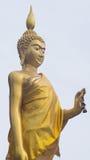 Buddha estando com a flor murcho na mão esquerda Imagem de Stock Royalty Free