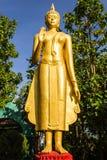Buddha estando em Wat Mokkanlan, Chomthong Chiangmai Tailândia imagem de stock
