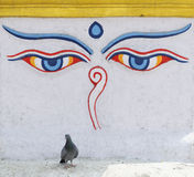 Buddha eyes Stock Photos