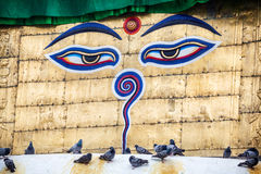 Buddha eyes on Swayambhunath stupa Stock Images