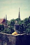 Buddha för forntida tempel och statyav Ayutthaya Thailand Royaltyfri Bild