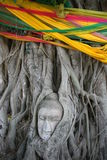 Buddha face in a banyan tree. A Buddha face in the root of a banyan tree at an ancient city, located in Ayuthaya, Thailand Stock Image