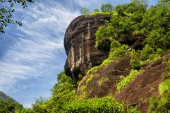Da Hong Pao Tea scenic area wuyishan. A buddha face in the rocky cliffs rising above the dahongpao cha, big red robe tea, area of wuyishan china in fujian stock photography