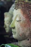 Buddha face side Stock Photos