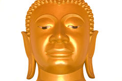 Buddha face on white bckground Royalty Free Stock Images