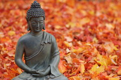 Buddha in Fall Leaves Royalty Free Stock Images