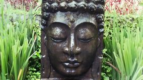 Buddha with falling water in the tropical garden in Ubud, Bali. stock footage