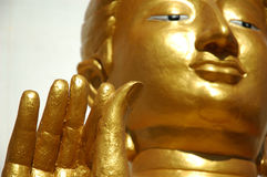 Buddha fingers Royalty Free Stock Photo