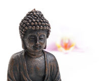 Buddha, flower, zen Royalty Free Stock Images