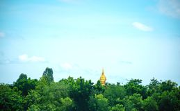 Buddha in the forest Nature and sky royalty free stock images