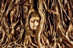 Buddha głowa ogarniająca drzewem zakorzenia w Ayuthaya, Tajlandia Zdjęcia Royalty Free