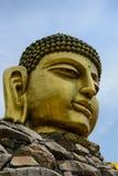 Buddha głowy ustawa obraz royalty free