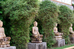 Buddha Garden. A number of buddha statues nestled among the bamboo at a resort in Phuket Thailand Stock Photos