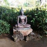 Buddha in giardino Fotografie Stock