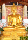 Buddha gold in choang mai thai Stock Image
