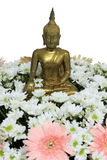 Buddha. Gold color paint Buddha with the flower vector illustration