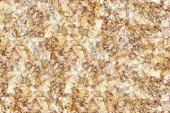 Buddha gold leaf background. Stock Image