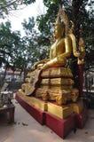 Buddha gold statue in Wat Bangkung, Ampawa,Thailand Stock Photo