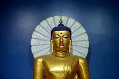 Buddha gold in temple Stock Images