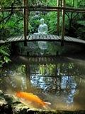 Buddha and golden fish royalty free stock photo